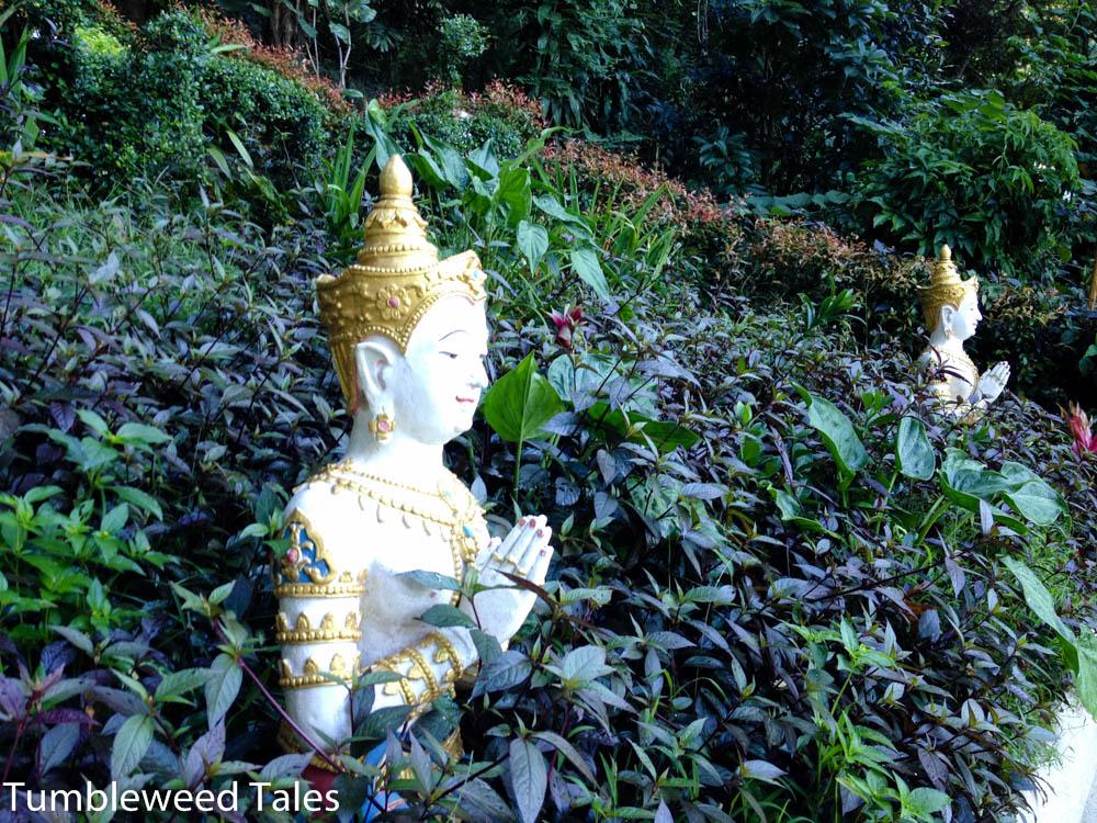 Buddhas im Dickicht