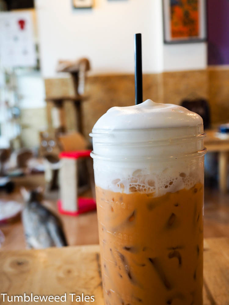 Thai Milk Tea im Catmosphere Café