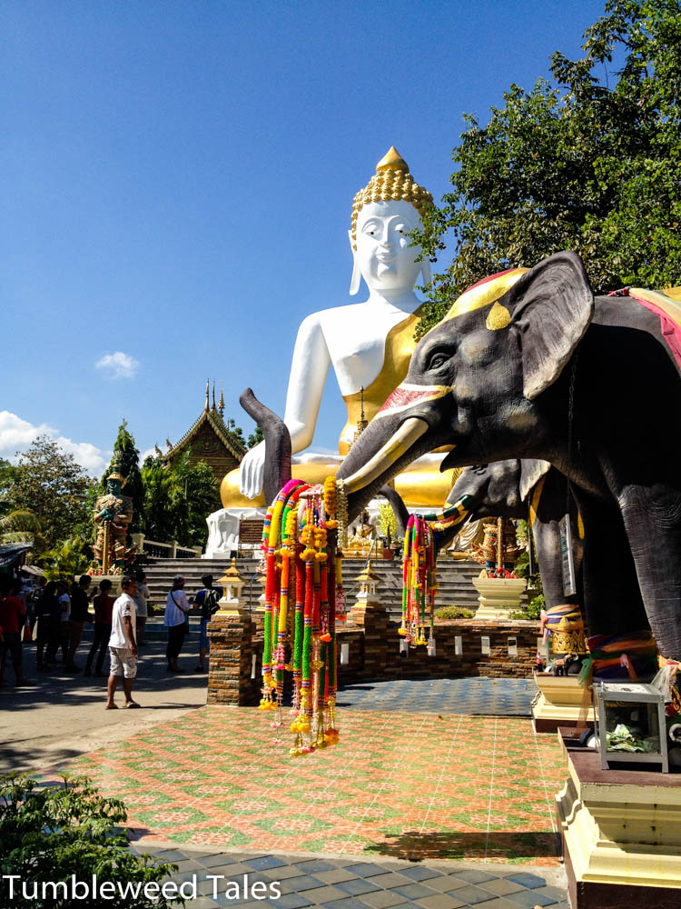 Buddha und Elefant