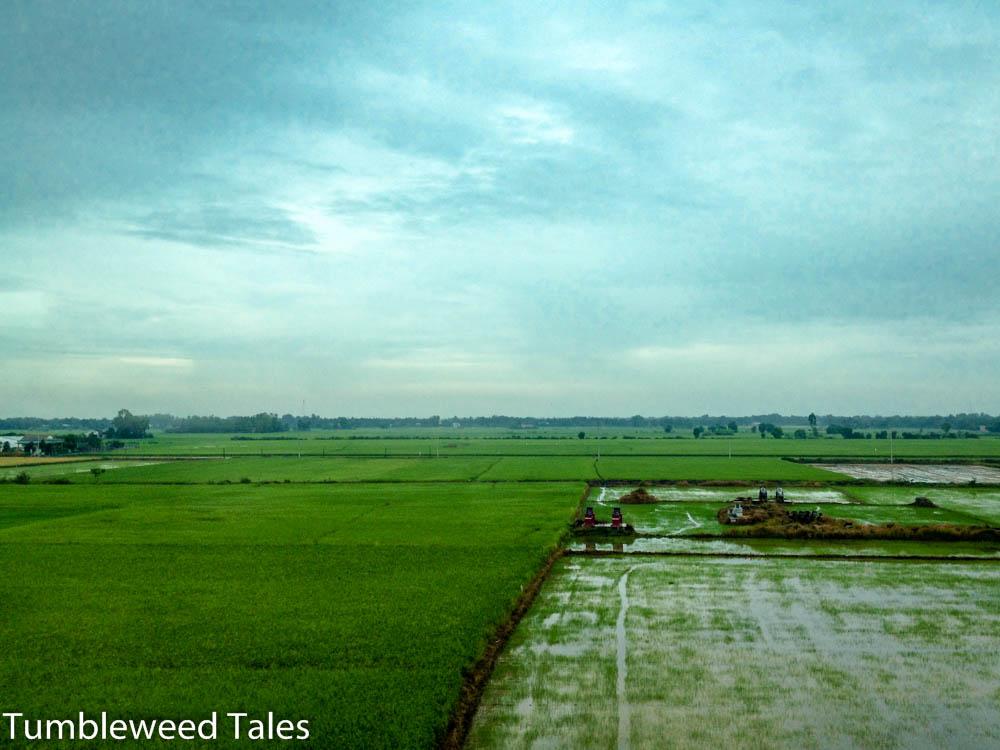 Reisfelder auf dem Weg zum Mekong-Delta. Gräber auf den Feldern zeigen die Besitzverhältnisse an, da sich so nachweisen lässt, welche Familie die Gegend schon seit Generationen bewirtschaftet.