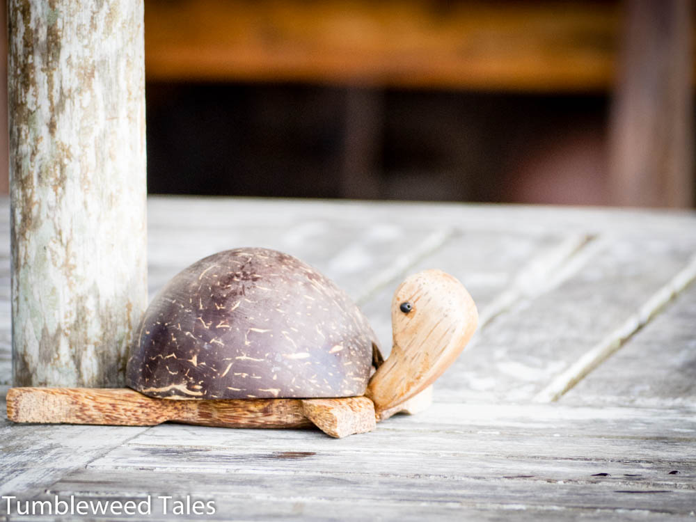 Ein Schildkröten-Aschenbecher