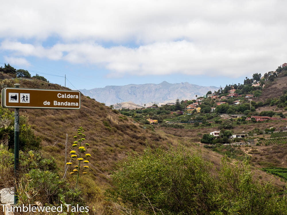 Vulkantour – Hoch zum Pico de Bandama