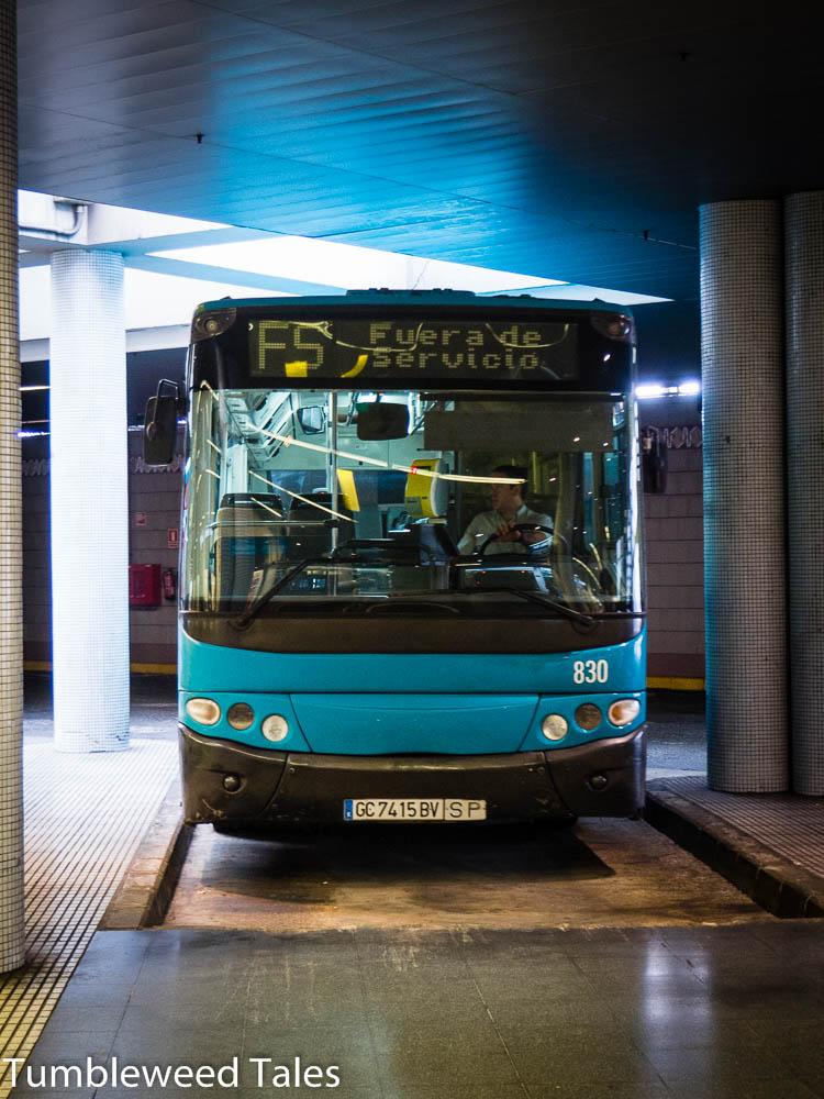 Die blauen Busse von Global bedienen die gesamte Insel