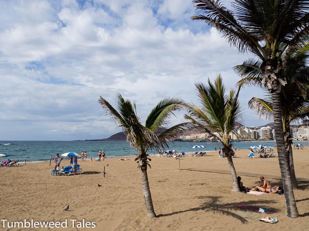 Palmen am Playa de Las Canteras