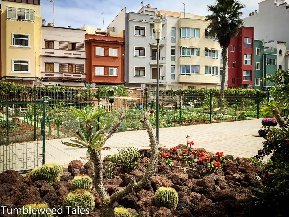 las-palmas-de-gran-canaria-urban-garden