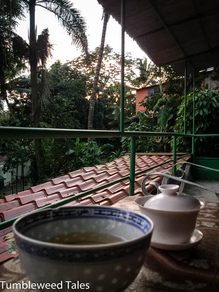 Abendliche Tee-Session auf dem Balkon mit Blick auf die Nachbargebäude (versteckt hinter der Vegetation)