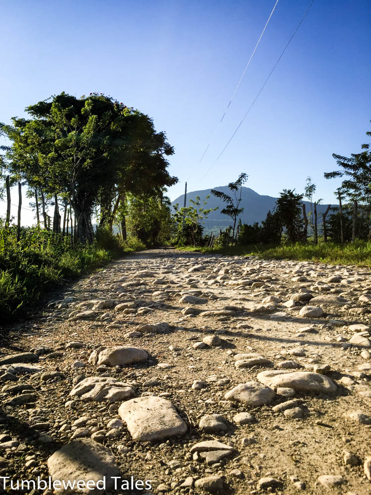 Pico Isabel de Torres im Hintergrund