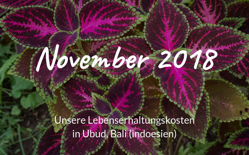 Lebenserhaltungskosten in Ubud, Bali (Indonesien) – November 2018